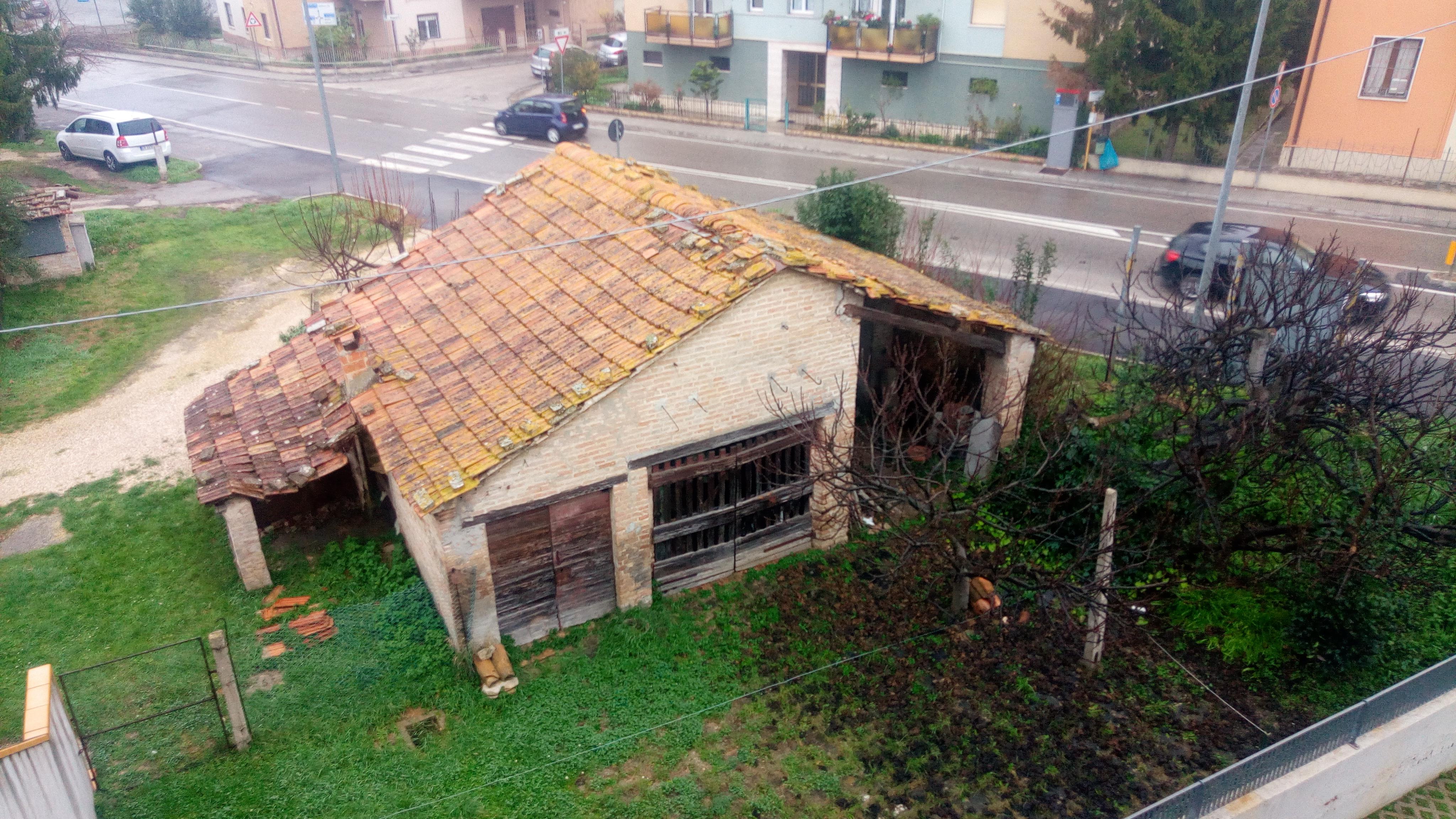 la casa in abbandono e il realtivo campo dove regnano indisturbati i topi in pieno centro