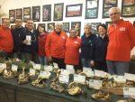 Gruppo micologico jesino