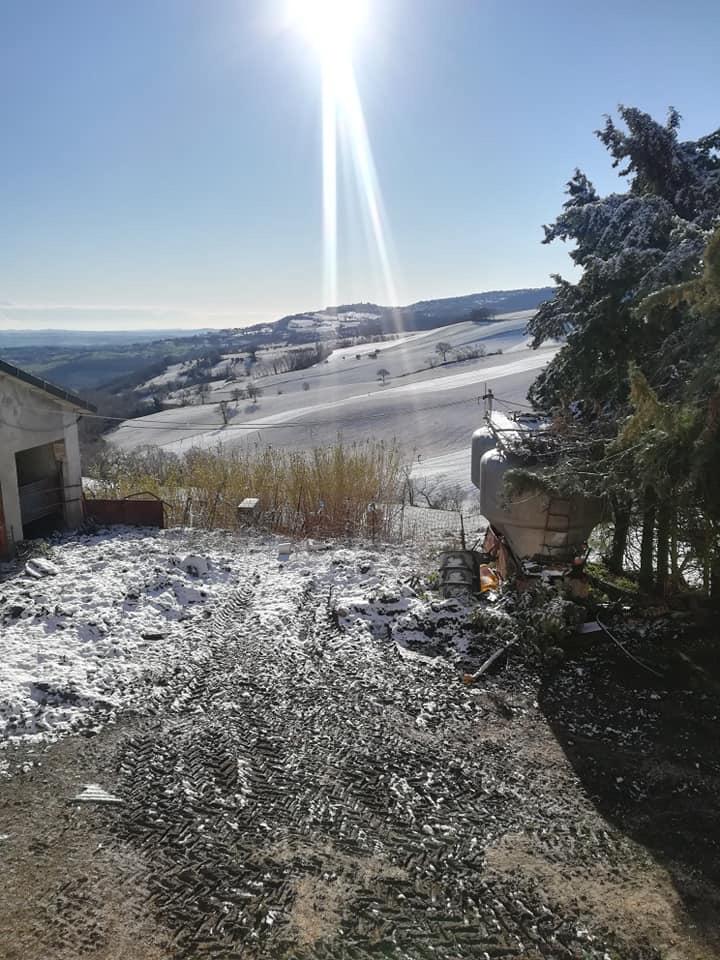 Neve Cingoli