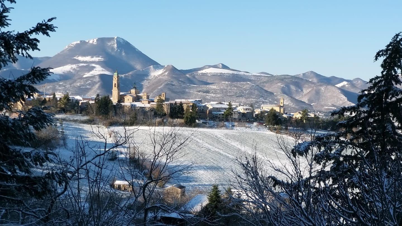 Neve Apiro