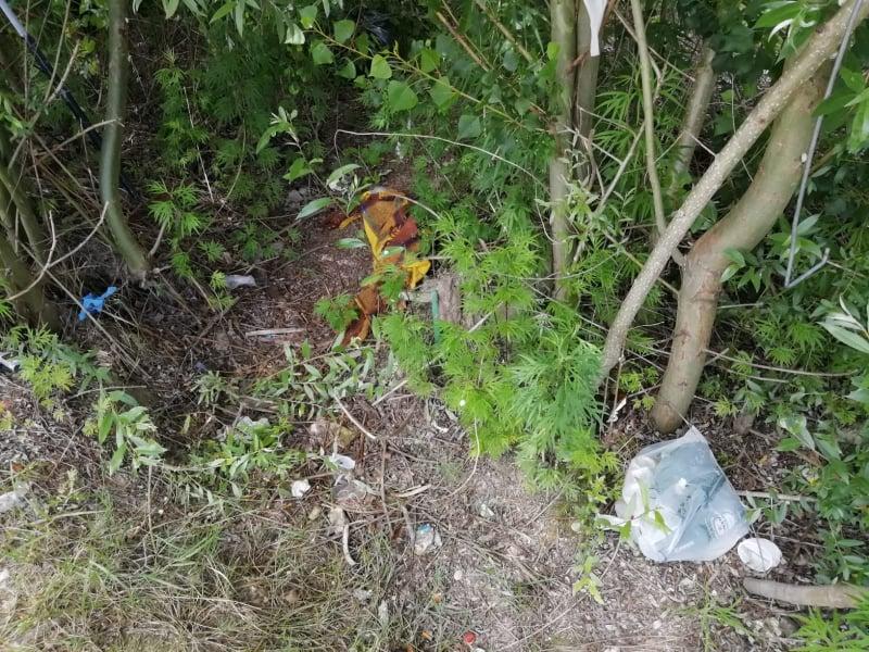 rifiuti fiume Esino (5)