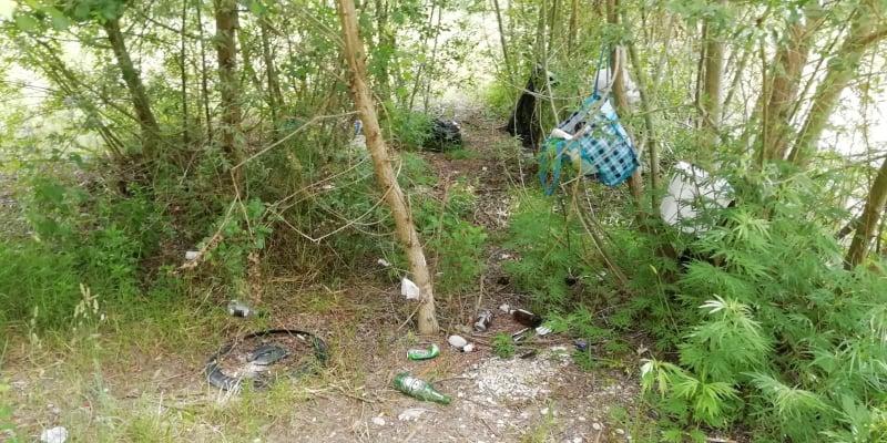 rifiuti fiume Esino (7)