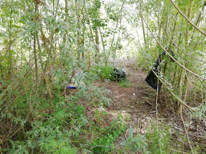 rifiuti fiume Esino (9)