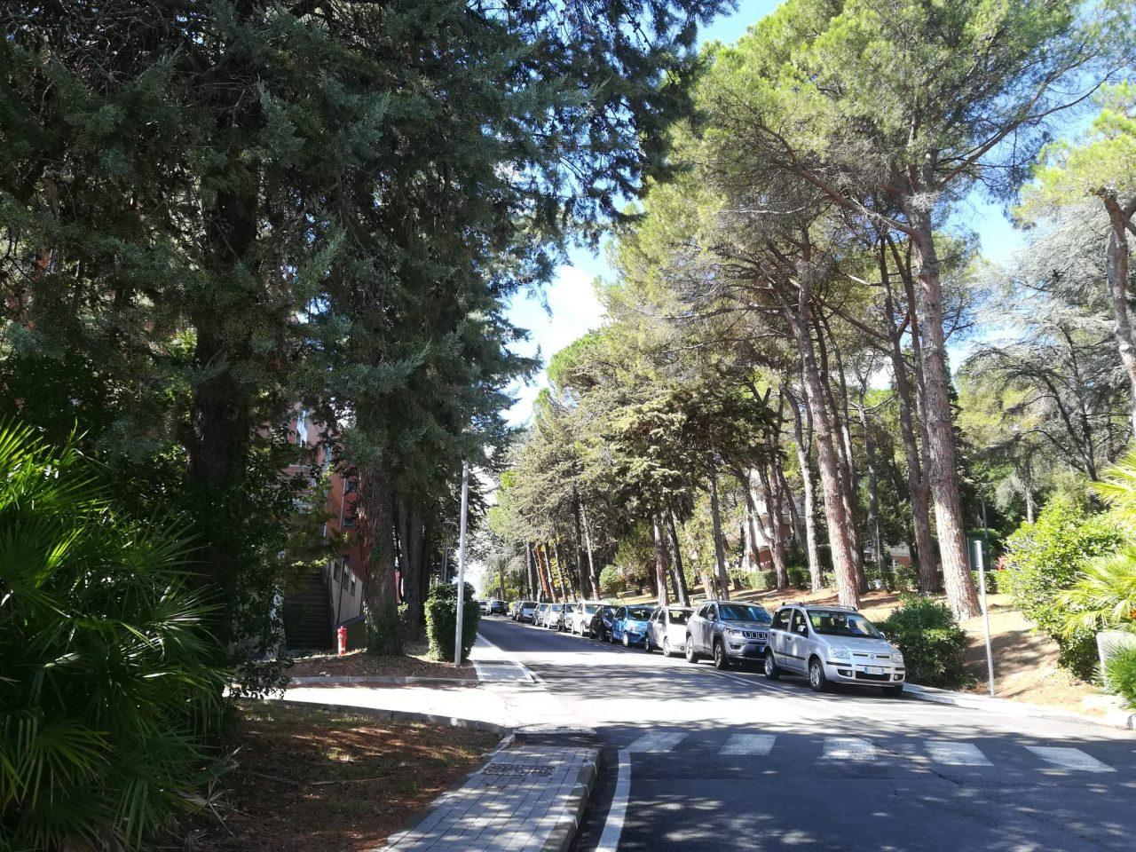 incidente ospedale carlo urbani murri jesi (5)